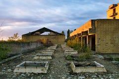 De verlaten overwoekerde bouw stock fotografie