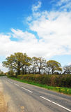De verlaten steeg van het land in West-Sussex, Engeland royalty-vrije stock afbeeldingen