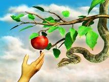 De verleiding van de appel Stock Fotografie