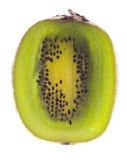 De verlichte Dwarsdoorsnede van de kiwi, Stock Afbeeldingen