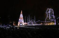 De verlichting van het nieuwjaar in het park van Donau, Novi Sad royalty-vrije stock foto's