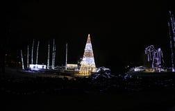 De verlichting van het nieuwjaar in het park van Donau, Novi Sad royalty-vrije stock fotografie