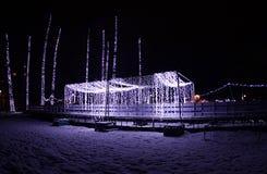 De verlichting van het nieuwjaar in het park van Donau, Novi Sad, Servië stock afbeelding