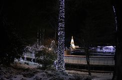 De verlichting van het nieuwjaar in het park van Donau, Novi Sad, Servië stock afbeeldingen