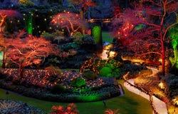 De verlichting van Kerstmis in de tuin Stock Afbeelding