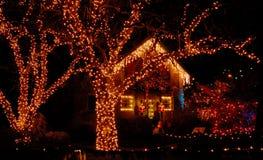 De verlichting van Kerstmis in de tuin Royalty-vrije Stock Foto's