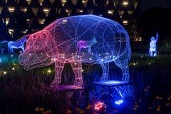 De Verlichtingsfestival 2017, Dec, 20 van Thailand van Bangkok, Thailand 9 Stock Foto's