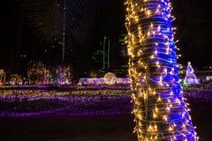 De Verlichtingsfestival 2017 van Thailand over Ratchadapisek Soi 8, Bangkok, Thailand op December21,2017: Licht op Kerstboom en l Stock Foto