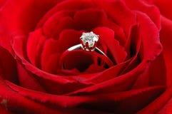 De verlovingsring in rood nam toe Stock Foto's