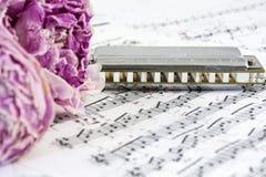 De vernietigde pioenen met harmonika zijn op de muzieknoten royalty-vrije stock foto's