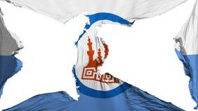 De vernietigde vlag van Kaïro stock illustratie