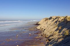 De vernietiging van het zandduin, Franse Atlantische westkust stock afbeelding