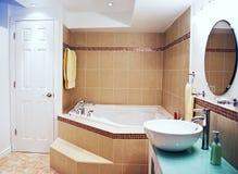 De vernieuwing van de badkamers Stock Afbeeldingen