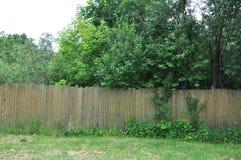 De veronachtzaamde tuin achter de oude omheining Stock Foto