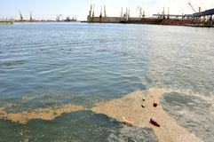 De verontreinigde kust van de Zwarte Zee in Roemenië Royalty-vrije Stock Afbeelding