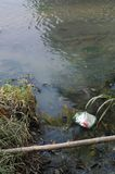 De verontreiniging van de rivier Royalty-vrije Stock Foto