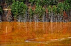 De verontreiniging van het meerwater in Geamana, dichtbij Rosia Montana, Roemenië Stock Afbeelding