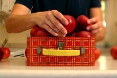 De verpakking van een gezonde lunch royalty-vrije stock foto's