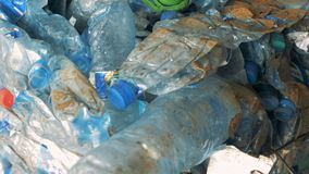 De verpletterde plastic flessen, sluiten omhoog stock footage