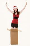 De verrassing van Kerstmis Royalty-vrije Stock Fotografie