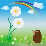 De verraste egel bekijkt een groot madeliefje in de lente royalty-vrije illustratie
