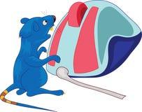 De verraste muis bevindt zich dichtbij een computermuis Stock Foto's
