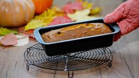 De vers gebakken cake van het pompoenbrood in een bakvorm Gediend met zich het verspreiden van de bladeren van de de herfstdaling stock videobeelden