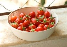 De vers Geplukte Tomaten van de Kers Royalty-vrije Stock Afbeeldingen