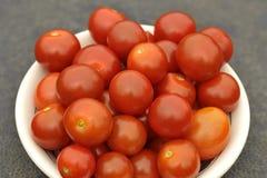 De vers Geplukte Tomaten van de Kers Stock Afbeeldingen