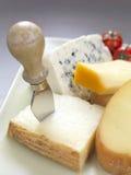 De verscheidenheid van de kaas op plaat Stock Foto's