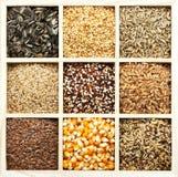 De verscheidenheid van zaden en van korrels royalty-vrije stock foto's