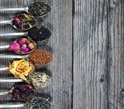 De verschillende die soorten thee als steekproef in de zilveren lepels worden voorgesteld, hoogste mening royalty-vrije stock afbeelding