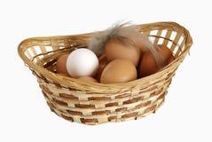 De verschillende eieren liggen in een mand Royalty-vrije Stock Afbeelding