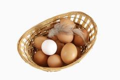 De verschillende eieren liggen in een mand Royalty-vrije Stock Afbeeldingen