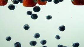 De verschillende smakelijke vruchten vallen in het water in langzame motie met witte achtergrond Bosbessen met aardbei stock video