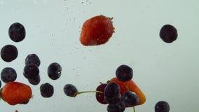 De verschillende smakelijke vruchten vallen in het water in langzame motie met witte achtergrond De kers van de bosbessenaardbei stock videobeelden