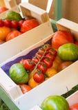De verschillende types van tomaten zijn in de doos royalty-vrije stock foto