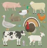 De verschillende vectordieren en de vogels van het huislandbouwbedrijf zoals koe, schapen, varken, de vastgestelde illustratie va stock illustratie