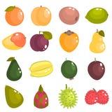De verschillende vruchten van de wereld kleuren vlakke geplaatste pictogrammen Royalty-vrije Stock Afbeelding