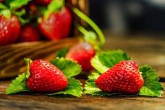 De verse aardbeien met bladeren in houten doos sluiten Royalty-vrije Stock Fotografie