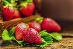 De verse aardbeien met bladeren in houten doos sluiten Royalty-vrije Stock Afbeelding