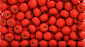 De verse Achtergrond van Tomaten Het concept van het voedsel het 3d teruggeven Stock Fotografie
