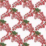 De verse bessen overhandigen getrokken naadloos patroon doodle Stock Fotografie