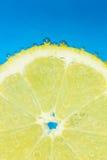 De verse die citroen van Nice met bellen op blauwe achtergrond wordt behandeld Stock Foto