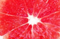 De verse die reeks van de grapefruitring op wit wordt geïsoleerd Stock Afbeeldingen