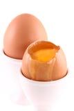 De verse eieren van de Kip Stock Fotografie