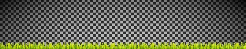 De verse en groene lijnen van de grasbanner vector illustratie
