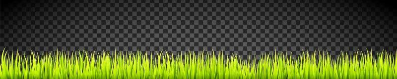 De verse en groene lijnen van de grasbanner Kruiden de groeibekleding stock illustratie