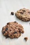 De verse gebakken eigengemaakte koekjes van de havermeelrozijn Stock Foto