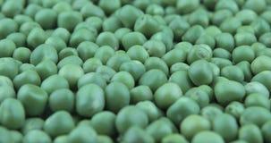 De verse groene erwt roteert De achtergrond van het voedsel stock videobeelden